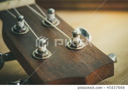 Head of ukulele and knob with morning light. 45837666