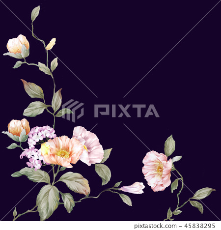 優雅的玫瑰花花卉和樹枝 45838295