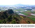 제주 바굼지 오름(단산)의 아름다운 풍경이다 45839084