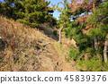 제주 바굼지 오름(단산)의 아름다운 풍경이다 45839376