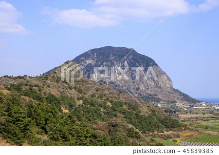 제주 바굼지 오름(단산)의 아름다운 풍경이다 45839385