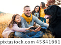 family, park, autumn 45841661