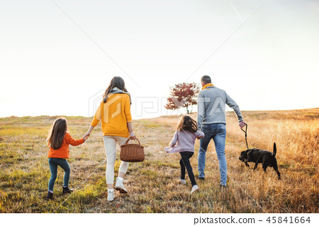 A rear view of family with two small children and a dog on a walk in autumn nature. 45841664