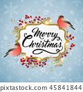 Christmas, bird, snowflake 45841844