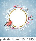 Christmas bird snowflake 45841853