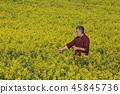 花朵 花 花卉 45845736