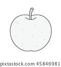 梨單色灰度 45846981