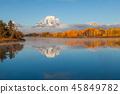 秋天 秋 大提顿国家公园 45849782