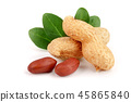peanuts with leaf isolated on white background 45865840