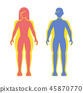 overweight,vector,obese 45870770