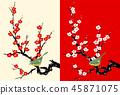 Plum ume plum white plum blossoms 45871075