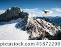 Bird flies over Dachstein glacier, Austria. 45872290