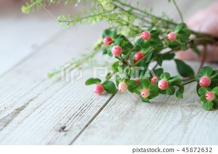 Pipericum fruit 45872632