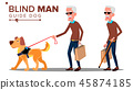 Blind Old Man With Dark Glasses, Cane In Hand And Guide Dog Vector. Isolated Cartoon Illustration 45874185