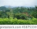 泰國 泰國清邁 景點 45875330