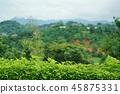 泰國 泰國清邁 景點 45875331