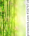 background, bamboo, frame 45879718