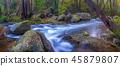 river, stream, autumn 45879807