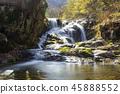 전라남도,구례,산수유마을 45888552