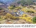 전라남도,구례,산수유마을 45888567