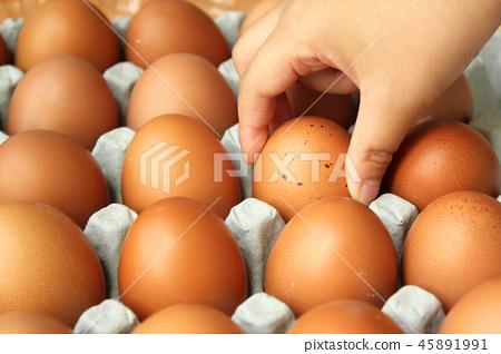 egg 45891991