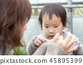 熊猫老鼠,母亲,女儿,家庭,喂养 45895399