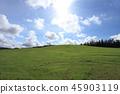 풀밭,언덕,배경 45903119