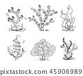 Marine seaweeds, sea flora, ocean plants in vintage hand drawn, doodle, sketch style stock vector 45906989