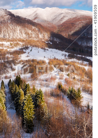 beautiful winter landscape on a sunny day 45909509