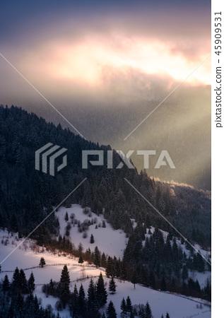 beautiful winter scenery in morning light 45909531