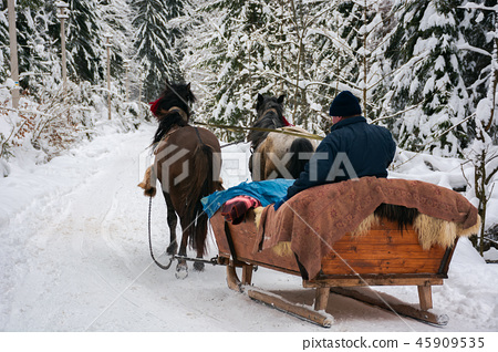 winter ride in horse sleigh 45909535