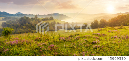 panorama of beautiful foggy sunset in mountains 45909550