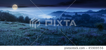 panorama of beautiful foggy night in mountains 45909556