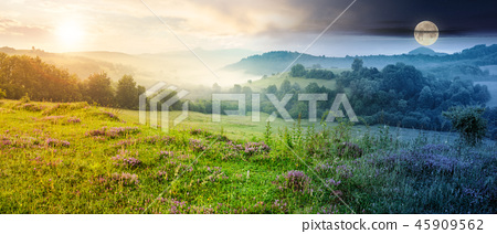panorama of beautiful foggy landscape in mountains 45909562