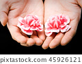 카네이션, 꽃, 손 45926121