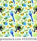 toucan, leaf, bird 45926598