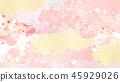 Japanese - Japanese style - Japanese pattern - background - Washi - spring - cherry tree - pink 45929026