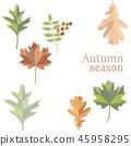 Autumn leaves background vector. Fall season  45958295