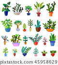 Cactuses set - vector graphic illustration 45958629