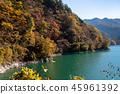 Okutama Lake Kokawachi Dam秋葉在湖邊 45961392