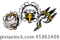 eagle, claw, vector 45963406