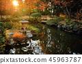 九州觀光區推薦福岡縣福岡市Yakusuien日式花園秋葉 45963787
