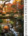九州觀光區推薦福岡縣福岡市Yakusuien日式花園秋葉 45963789