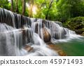 背景 雨林 泰国 45971493