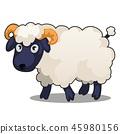sheep, vector, animal 45980156