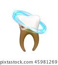 Cleaning and treatment human tooth 45981269