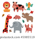 animals, fox, elephant 45985519