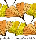 vector ginkgo leaf 45993022