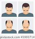 hair, vector, bald 45993714