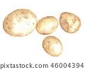 감자, 야채, 채소 46004394